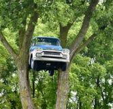 Chevrolet dans les arbres photo stock
