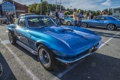 1965 Chevrolet-Korvetpijlstaartrog Royalty-vrije Stock Foto's