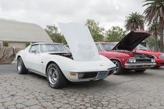 Chevrolet-Korvetpijlstaartrog op vertoning Stock Foto
