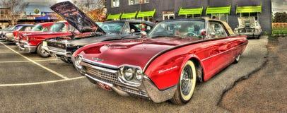 Chevrolet Thunderbird immagine stock libera da diritti