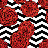 Chevrons seamless pattern background with hand drawn roses. Retro vintage design. Vector Royalty Free Stock Photos