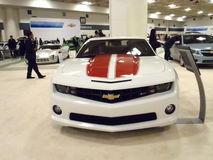 Chevy Cars on Display Stock Images