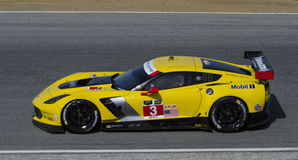 Chevy Corvette GT Le Mans Winner Stock Photography