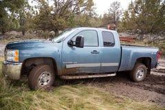 Chevy Truck i gyttja Arkivbilder