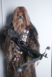 Chewbacca Royalty Free Stock Images