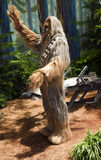 Chewbacca Stock Foto