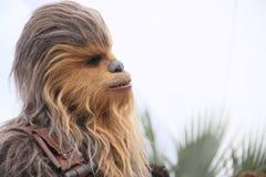 Chewbacca asiste al photocall