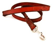 Chewed Dog Leash Royalty Free Stock Image