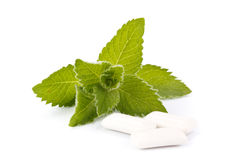 Chewing gum and fresh mint Royalty Free Stock Photos
