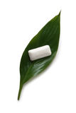 Chewing gum on a green leaf Stock Photography