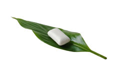 Chewing gum on a green leaf Stock Photos
