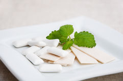 Chewing gum and mint. Chewing gum and fresh leaves of mint on a white plate Stock Photos