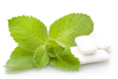 Chewing gum and mint Stock Image