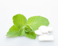 Chewing gum and mint Royalty Free Stock Photography