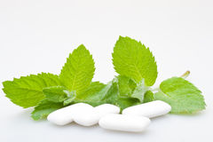 Chewing gum and mint royalty free stock images