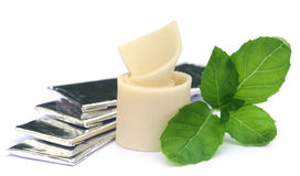 Chewing gum with mint leaves Stock Photography