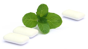 Chewing gum with mint leaves Royalty Free Stock Photography