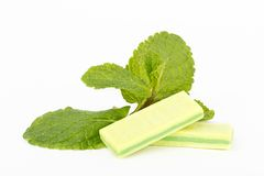 Chewing gum and mint Royalty Free Stock Image