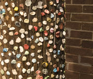 Chewing-gum sur Pôle à Charleston, Sc Photographie stock libre de droits