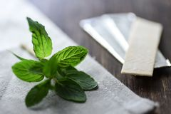 Chewing gums with mint leafs on wooden table. Close up Stock Photos