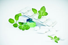 Chewing gym and fresh  of mint. Chewing gym and fresh leaves of mint on a white background Royalty Free Stock Images