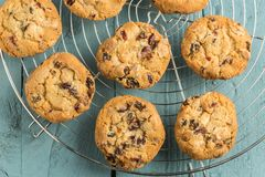 Chewy cranberry cookies. Chewy cranberry, fruit,nut,white choc cookies on the round cooling rack stock images