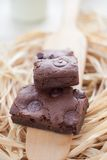 Chewy Fudge Homemade Brownies Royalty Free Stock Photography