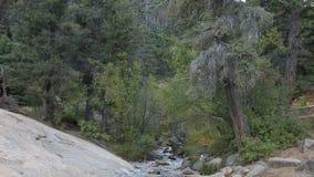 Cheyenne Creek dichtbij Colorado Springs, Colorado stock videobeelden