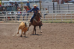 Cheyenne Frontier Days Rodeo 2013 Royalty Free Stock Photo