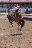 Cheyenne Frontier Days Rodeo 2013 Stock Photography