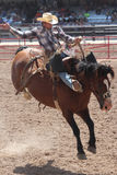 Cheyenne Frontier Days Rodeo 2013 Stock Photo