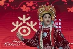 Chiński nowy rok 2019 - opera zdjęcie royalty free