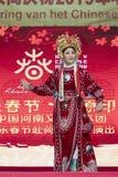 Chiński nowy rok 2019 - opera zdjęcia stock