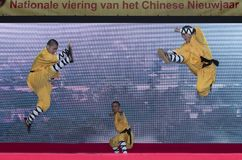 Chiński nowy rok 2019 - Shaolin Kung Fu obraz stock