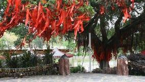 Chińczycy wiązali świętą flaga na gałąź święty drzewo dla ono modli się w ogródzie zbiory wideo
