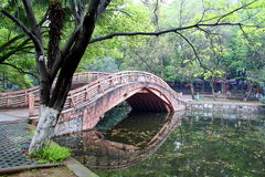 chińczyka bridżowy park Obraz Royalty Free