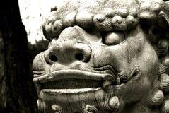 Chińczyka smoka strażowa postura Zdjęcia Royalty Free