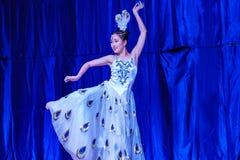 Chińscy akrobaci & tancerze blask księżyca lasu festiwal obrazy stock