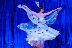Chińscy akrobaci & tancerze blask księżyca lasu festiwal fotografia stock