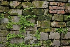 Chińska antyczna ściana zdjęcie royalty free