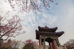 Chińska architektura - pawilon zdjęcie stock