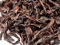 Chińska czarna herbata Obrazy Stock