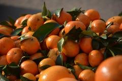 Chińska miodowa pomarańcze Zdjęcie Stock