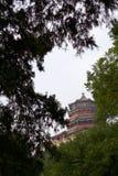 Chińska pagoda obramiająca zielonymi drzewami obrazy stock