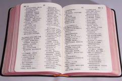 Chińska wersja biblia obraz stock