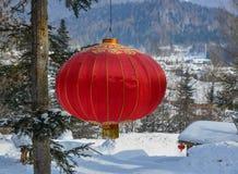Chiński czerwony lampion w sosna lesie zdjęcie stock