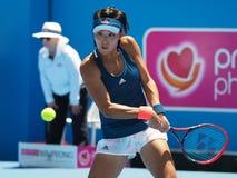 Chiński gracz w tenisa Wang Qiang narządzanie dla australianu open przy Kooyong Klasycznym Powystawowym turniejem Obrazy Royalty Free