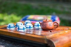 Chiński herbaciany ustawiający w ogródzie Zdjęcie Royalty Free