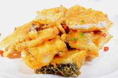 Chiński jedzenie: Smażący rybi przepasuje Fotografia Stock