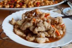 Chiński jedzenie talerz Fotografia Royalty Free
